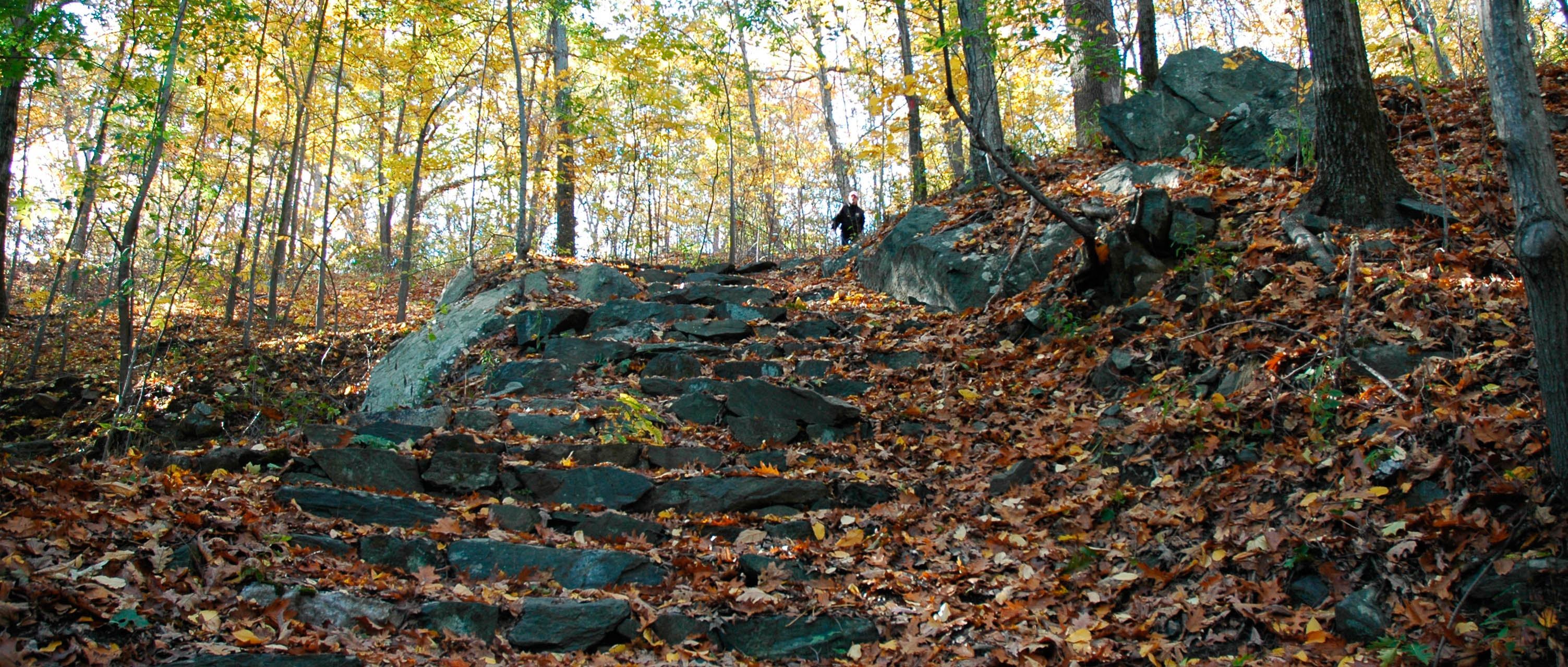 Great stairs DSC_0045-web