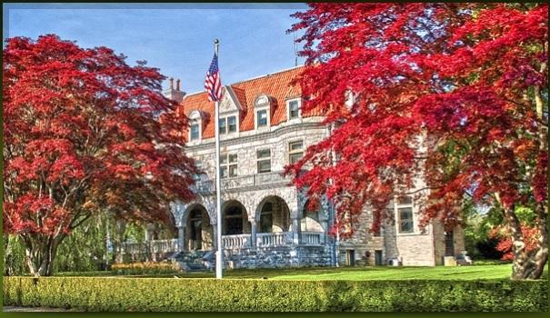 Newport Tree Society