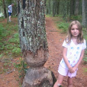 Pulaski Park – July 9