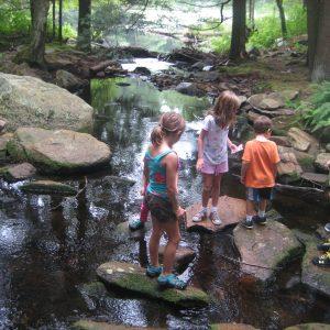 Pulaski Park – July 5