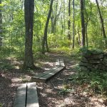 Browning Woods – Oct 1